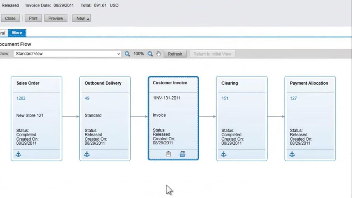 Rechnungswesen mit SAP