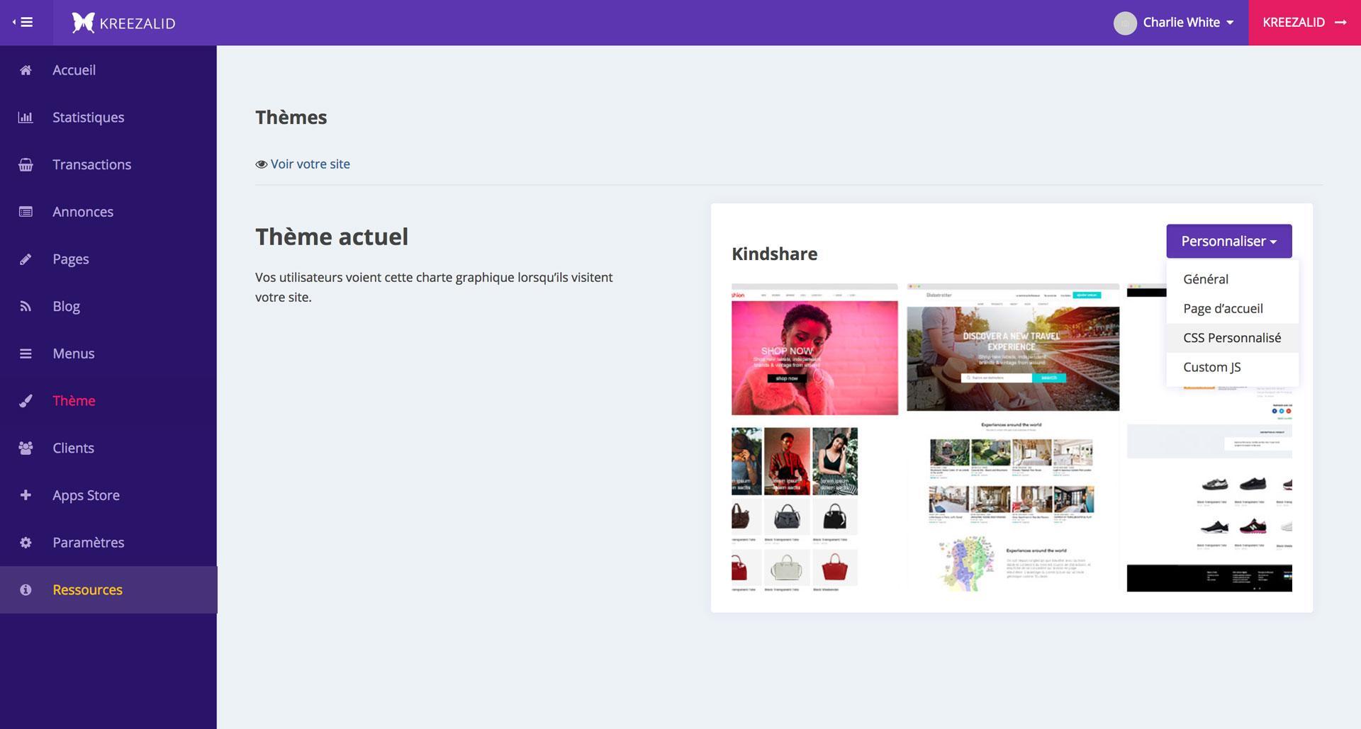 Fügen Sie benutzerdefinierte CSS Ihrem Markt