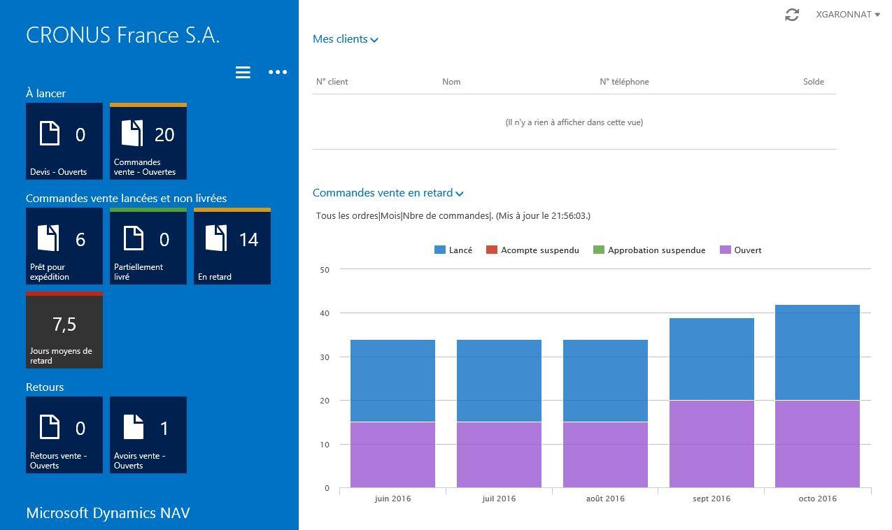 Microsoft Dynamics NAV: Notizen, Extranet Secure Sockets Layer (SSL)