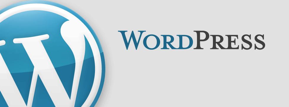 Bewertungen WordPress: Der Marktführer im Bereich Open Source-CMS - appvizer